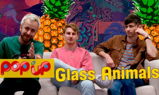 glass animlas popup